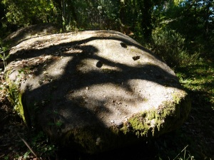 petróglifo no castro de Montealegre (por enriba do túnel construido)