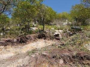 apertura de pista perto da Pedra Morcegueira