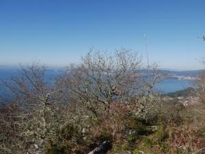 carballeira e panorámicas da ría de Pontevedra desde o alto de outeiro da Teixugueira