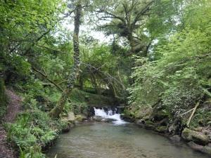 ribeira do rego Loira-Neibó