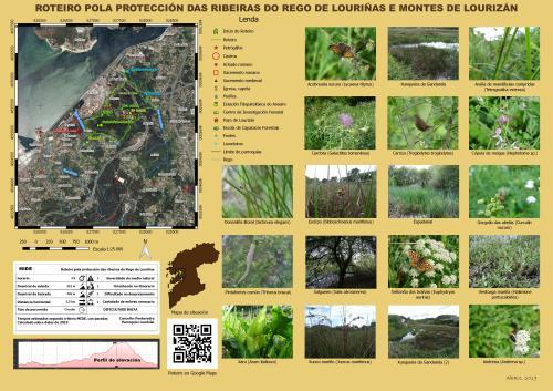 Rego de Louriñas e Montes de Lourizán 6