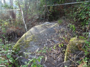 restos do petróglifo do Viveiro